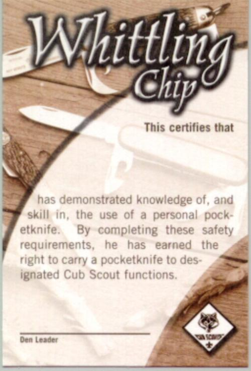 Whittling chip